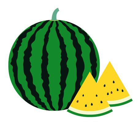 A simple vector illustration of a typical summer fruit, a round and large watermelon with stripes, and a yellow watermelon cut in a triangle.