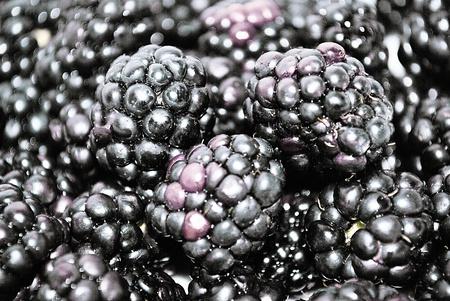 Berries ripe blackberries photo