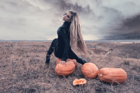 scary forest: Two sexy girls in a field surrounded by pumpkins on Halloween.