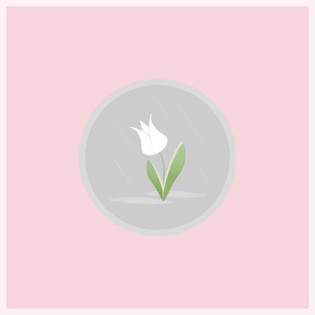 봄 꽃 평면 아이콘입니다. 분홍색 배경에 회색 동그라미에서 튤립 꽃입니다. 일러스트