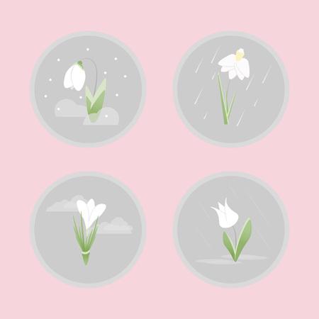 봄 꽃 평면 아이콘을 설정합니다. 분홍색 배경에 회색 동그라미에서 꽃입니다.