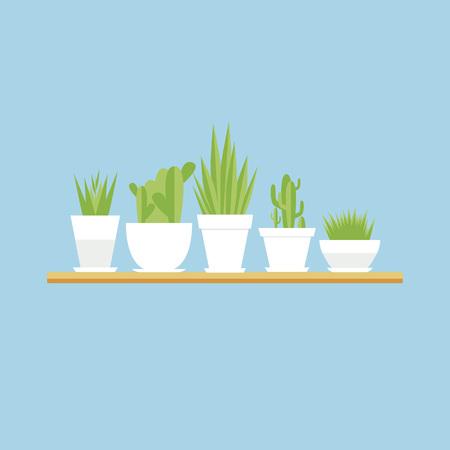벡터 houseplants 플랫 세트입니다. 파란색 배경에 냄비에 꽃입니다.