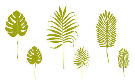 Silhouettes of tropical leaves. Vector objects isolated on white background.