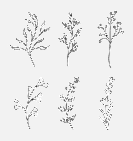 Vector set of line objects isolated on white background.