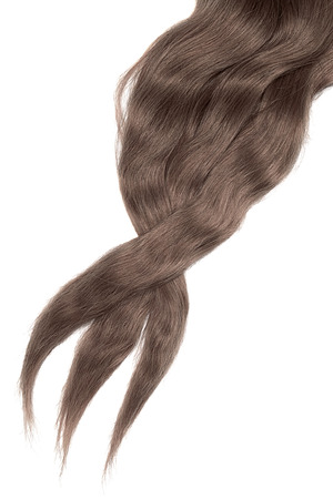 Brown (chocolate) hair isolated on white background. Long disheveled ponytail