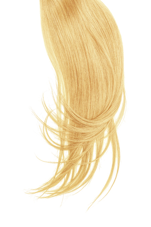 Blond hair, isolated on white background. Long and disheveled ponytail