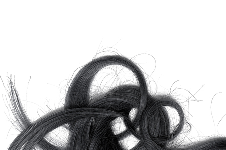 A strands of long, twisted, black hair isolated on white background