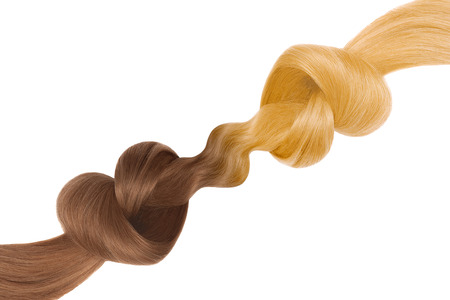 Knots of hair in shape of heart, isolated on white background. Brown and blond. Care concept