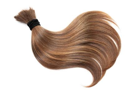 Ricciolo di capelli castani naturali, isolato su sfondo bianco. Primo piano della coda di cavallo