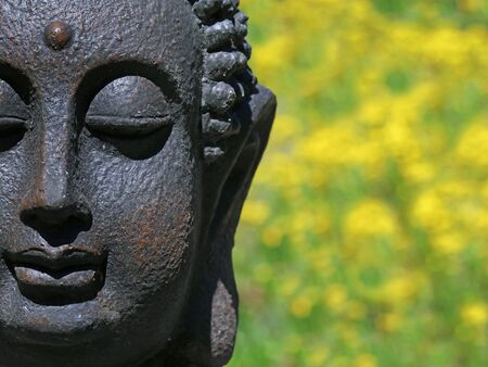 buddha statue head with natural yellow flower bokeh, close up with copy space