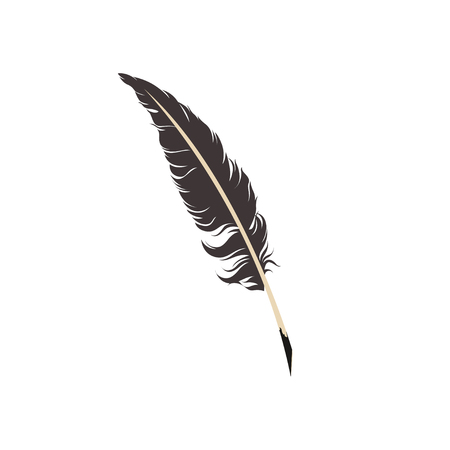 Feather on white background Vector illustration.