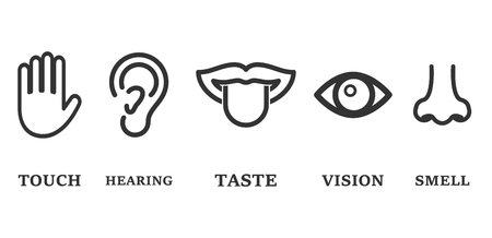 Icon set of five human senses: vision, smell, hearing, touch and taste. Simple line icons and color circles vector illustration Illustration