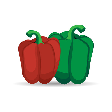 Bell Pepper, a hand drawn vector illustration of a bell pepper (paprika), isolated on an artistic background with shadow backdrop (each elements are on separate groups for easy editing).