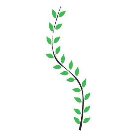 foliage on a white background, climbing plants, vector illustration 向量圖像