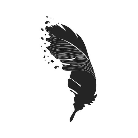Cute cartoon feathers doodle image. Media highlights symbol. Freehand drawing quill. Vector illustration. Isolated on white background