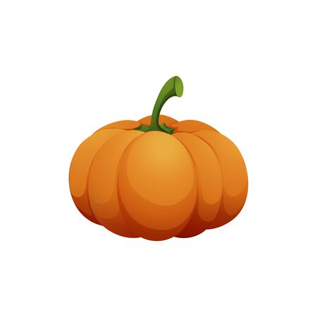 Orange pumpkin vector illustration. Autumn halloween pumpkin, vegetable graphic icon or print, isolated on white background 版權商用圖片 - 147865449