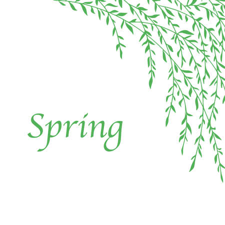 Spring seamless pattern with branch . Floral repeating background, Vector illustration.