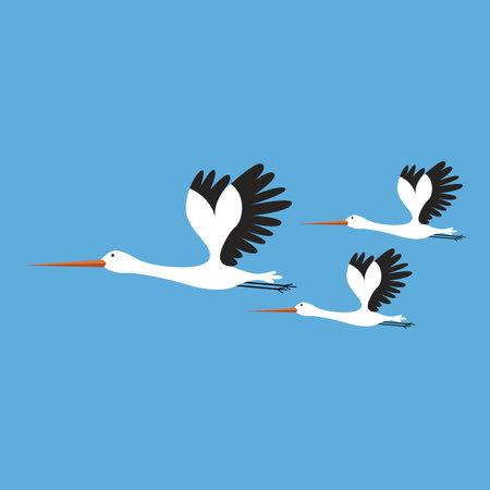 Vector illustration of storks on blue background, birds set cartoon style