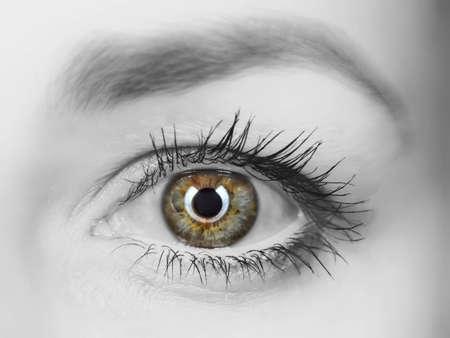 close-up womanish eye