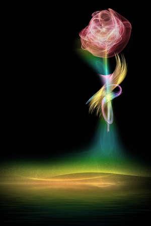 luminescence: Rose on a black background