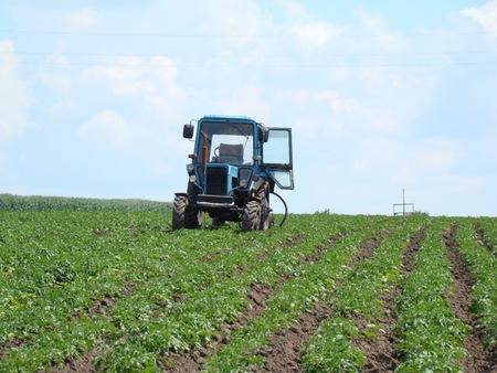 Der Traktor mit offener Tür stehend in einem Kartoffelfeld im Vorgriff auf seinen Meister Standard-Bild - 40894002