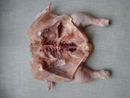 awaiting: chicken fresh gutted awaiting preparation,diet