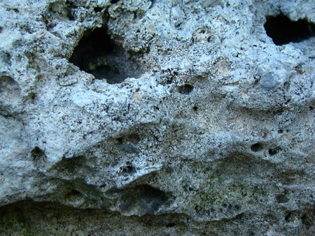 coquina: estructura porosa de la estructura de piedra caliza de piedra suelta, construcci�n