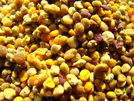 beekeeping: Bee pollen is one of the most valuable and most useful products of beekeeping.