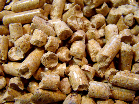 wood pellets: finely shredded wood is turned into pellets. Stock Photo