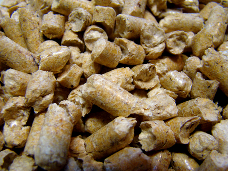 pellets: finely shredded wood is turned into pellets. Stock Photo
