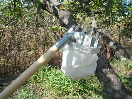 facilitate: devices for gathering fruit from high trees