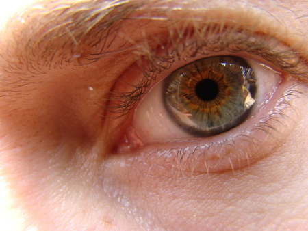 ojo humano: ojo humano mirando a la distancia frente a él Foto de archivo