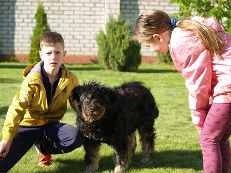 children stroking a big black dog Stock Photo