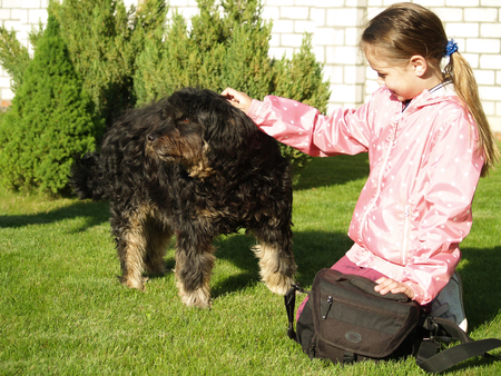 children stroking a big black dog Stock Photo