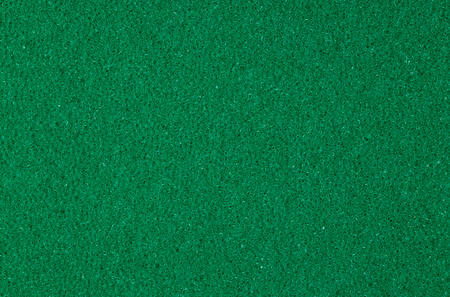 spongy: Green spongy macro texture background