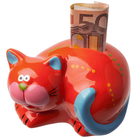 Red piggy bank in the form of a cat. Money box with 50 euro note placed on white background.