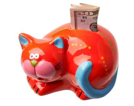 Piggy bank isolated on white. Money box looks like a red cat. There is put 50 dollars.