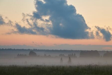 Forest landscape with fog during sunset with a large cloud on the horizon