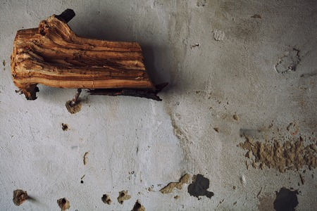 parget: Interior Concept. An old piece of wood on the wall as a trophy