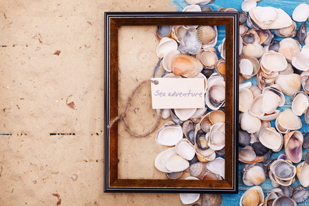 vocation: Sign sea adventure with shells and photo frame. Vocation background