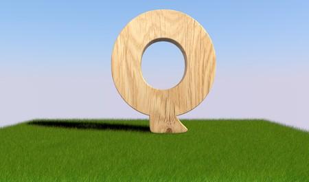 3D decorative wooden Alphabet on green Grass, capital letter Q