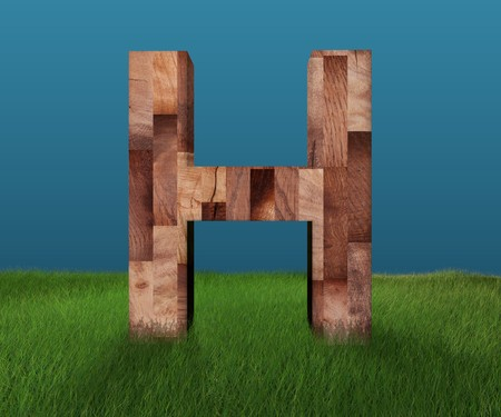 3D decorative wooden Alphabet on green Grass, capital letter H