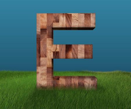 3D decorative wooden Alphabet on green Grass, capital letter E Stock Photo
