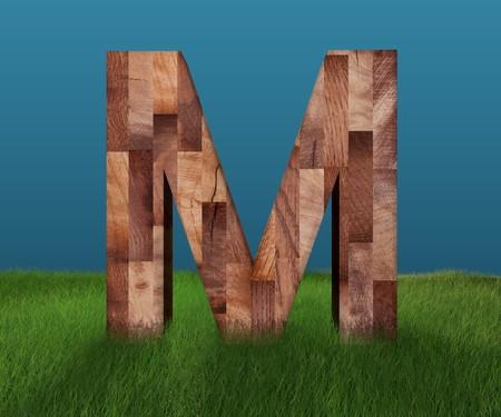 3D decorative wooden Alphabet on green Grass, capital letter M