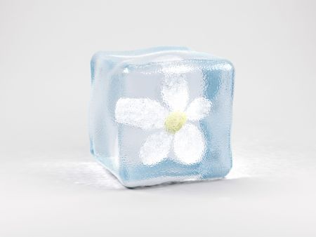 clearness: Flower in ice cube on a white background. 3D image.