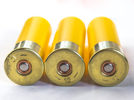 ammunition 12 gauge