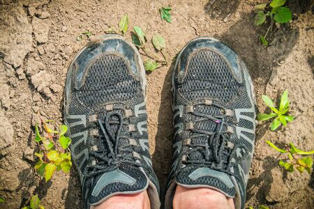 Men's legs in sneakers, top view. Hiker stands on a muddy trail in the forest.