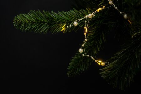Fir branch on black background with garland. Space for text, isolated. Stockfoto