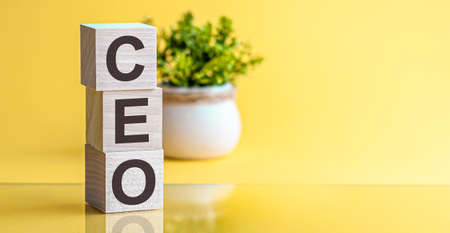 CEO word made of wooden cubes on a yellow background with copy space, business concept.