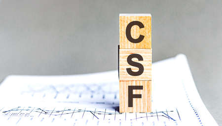 Modern business buzzword - csf - critical success factor. Word on wooden blocks on a white background. Close up Stok Fotoğraf